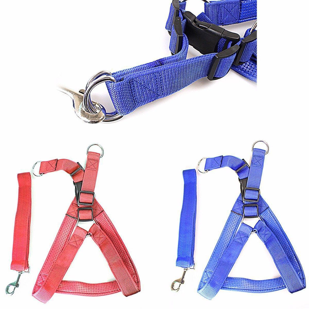 Heavy Duty Dog Big Nylon Belt With Harness Attached In Blue and Red  0056 (Large Letter Rate)