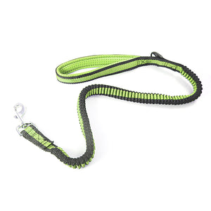 Dog Collar Flexible Dog Leash Stretchy Dog Leash With Buckle Assorted Colours Pets 3042 (Parcel Rate)