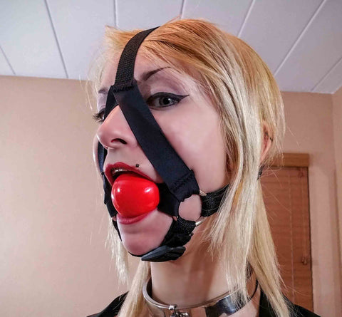 Darlex Trainer Style Ball Gag (Silicone Ball, Darlex and Webbing)
