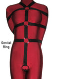 Box-Tie Bondage Harness with Crotch Strap (Five Point Style, Poly Webbing) - Bondage Webbing