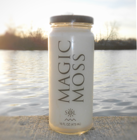 Magic Moss - On Sale Now!