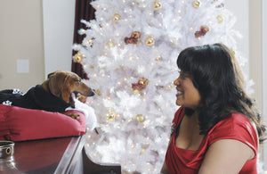 "Don't Miss Jackée in ABC Family's Holiday Movie ""Christmas Cupid"" premiering Dec. 12"