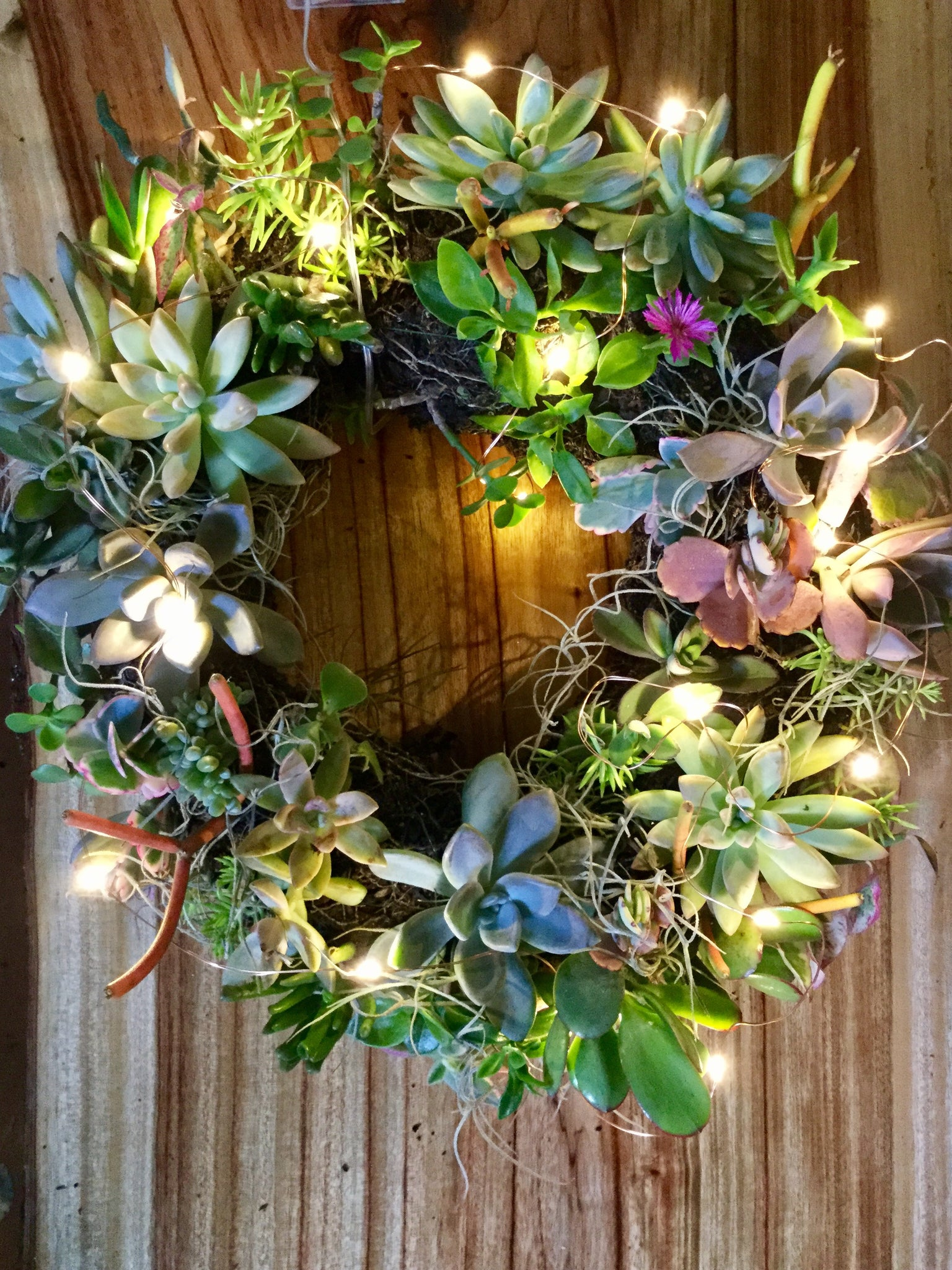 Succulent Heart Shaped Wreath - Febuary 11