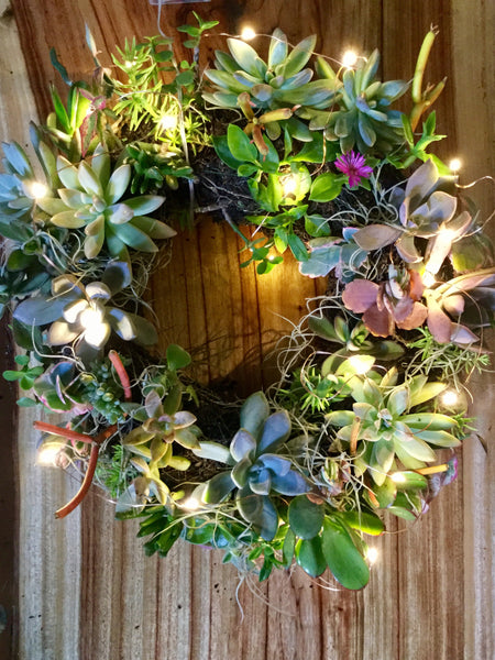 Succulent Wreath - July 30