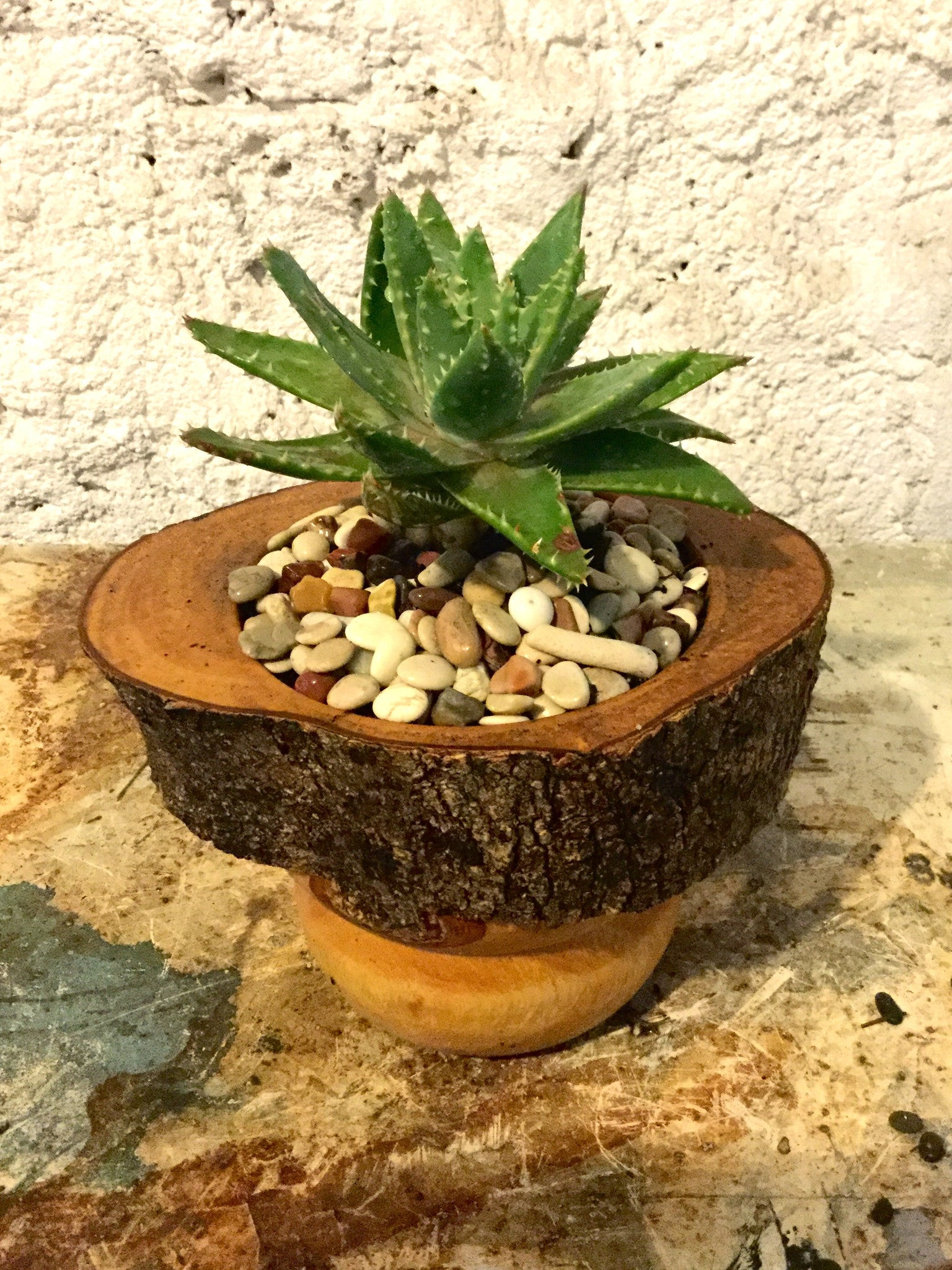 Turned wooden planter - rustic