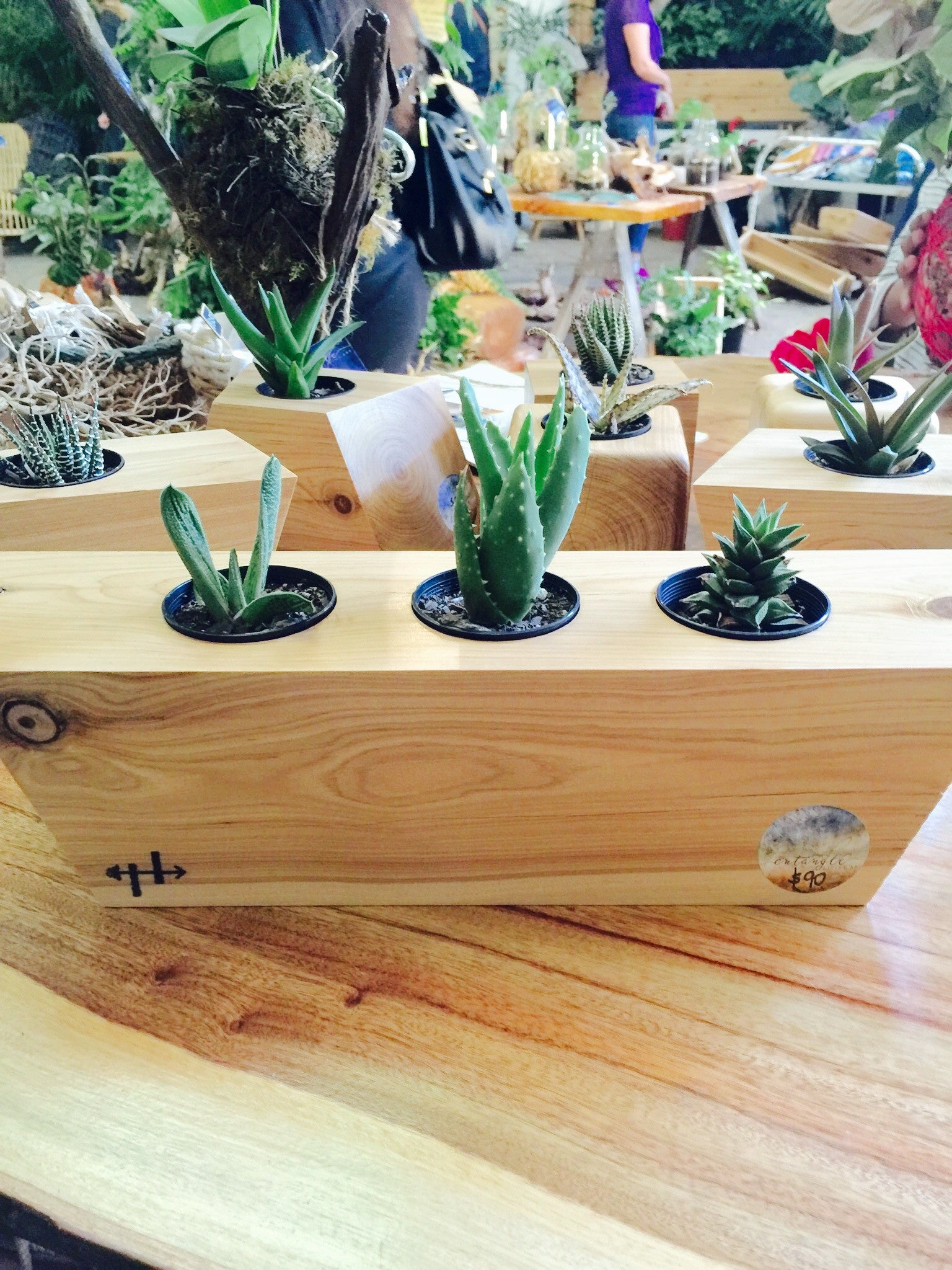 wooden geometric - clean three planter