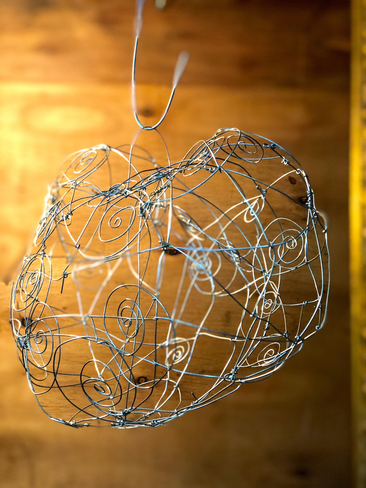 Whimsical Wire Sculpting - Febuary 17