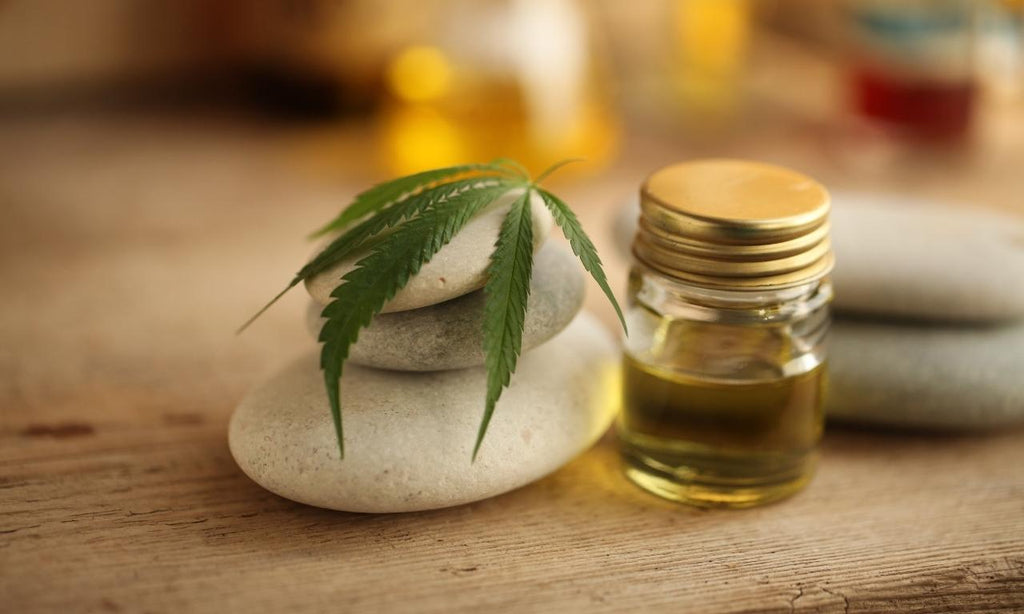 CBD in skincare – uses and benefits