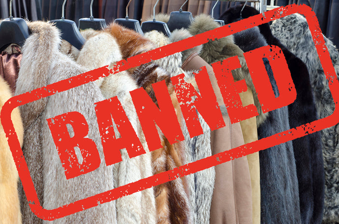 How Fashion is Banning Fur!