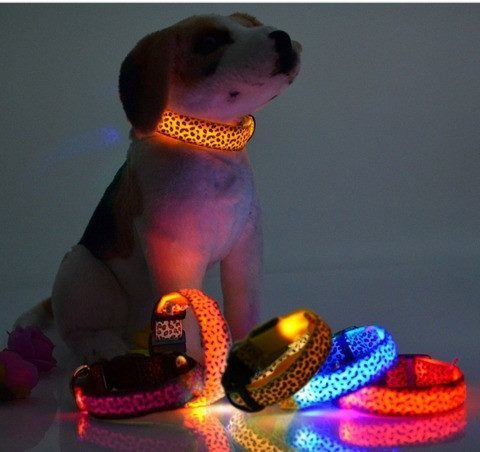 LED Light Up Dog Collar - Leopard Print
