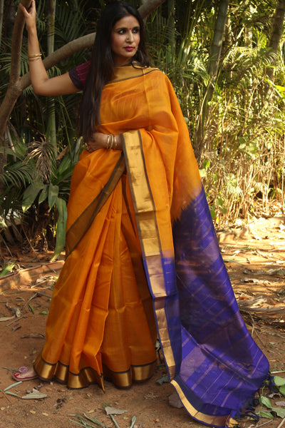 Mustard pure kanchipuram cotton silk handloom saree with contrast purple pallu.TCB-JT1057