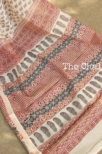 | Oats and Raisins | 'Bagh' hand block printed saree in maheshwari silk. TCB-SBGH2-P1
