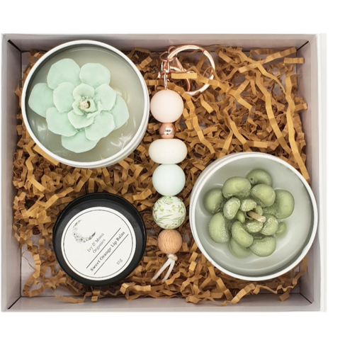 Succulent Candle Gift Set
