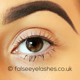 Ardell Fashion Lashes Brown 116 - Front Shot