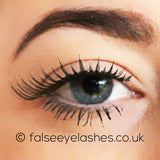Ardell Runway Lashes - Claudia - Front Shot