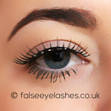 Ardell Runway Lashes - Fun - Front Shot