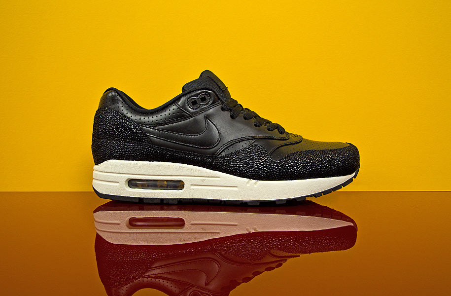 am1_stingray