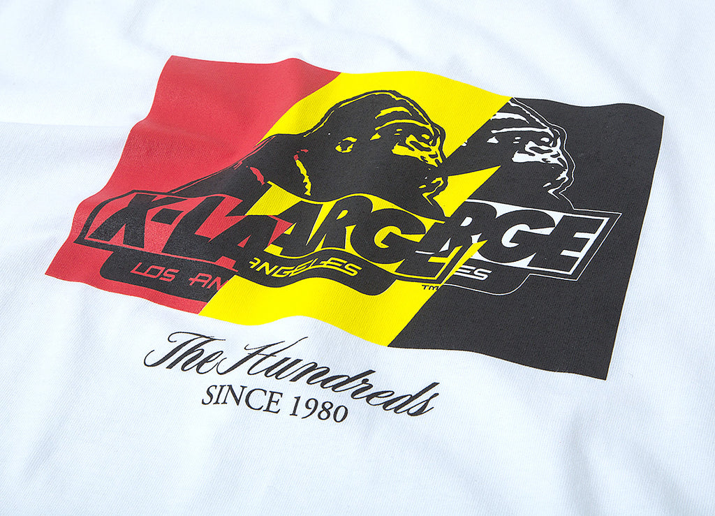 The Hundreds x XLarge Wildfire-X T Shirt - White