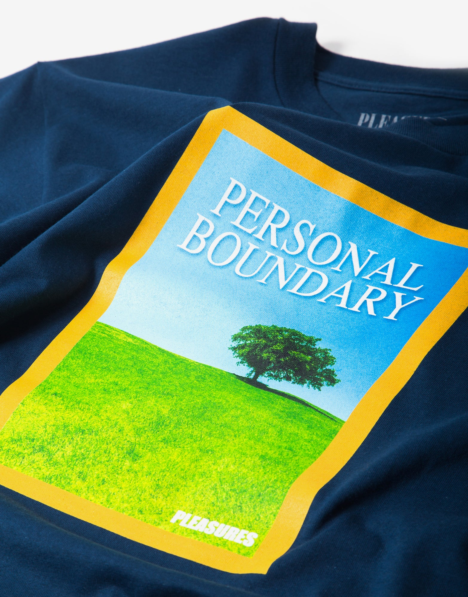 Pleasures Boundary T Shirt - Harbor Blue