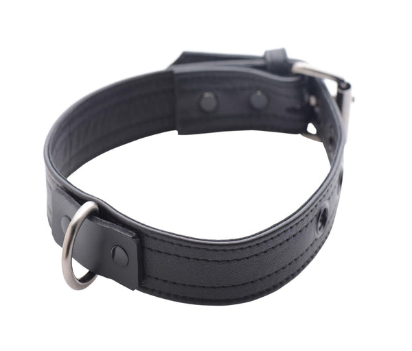 Strict Leather Luxury Locking Collar