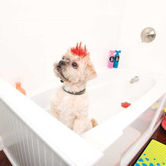 Pet Shop: Bath Time