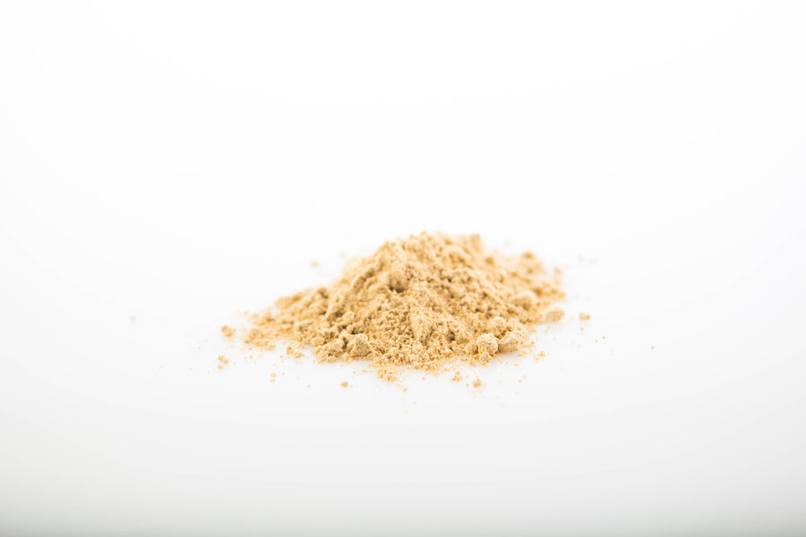 Sun Potion - Reishi Mushroom Powder - Jungmaven Hemp Clothing