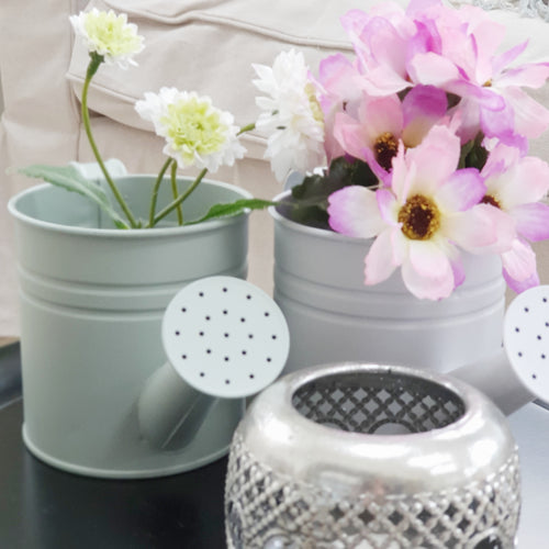 Mini Watering Can Planters