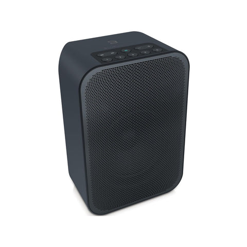 Bluesound PULSE FLEX 2i Portable Wireless Multi-room Smart Speaker with Bluetooth