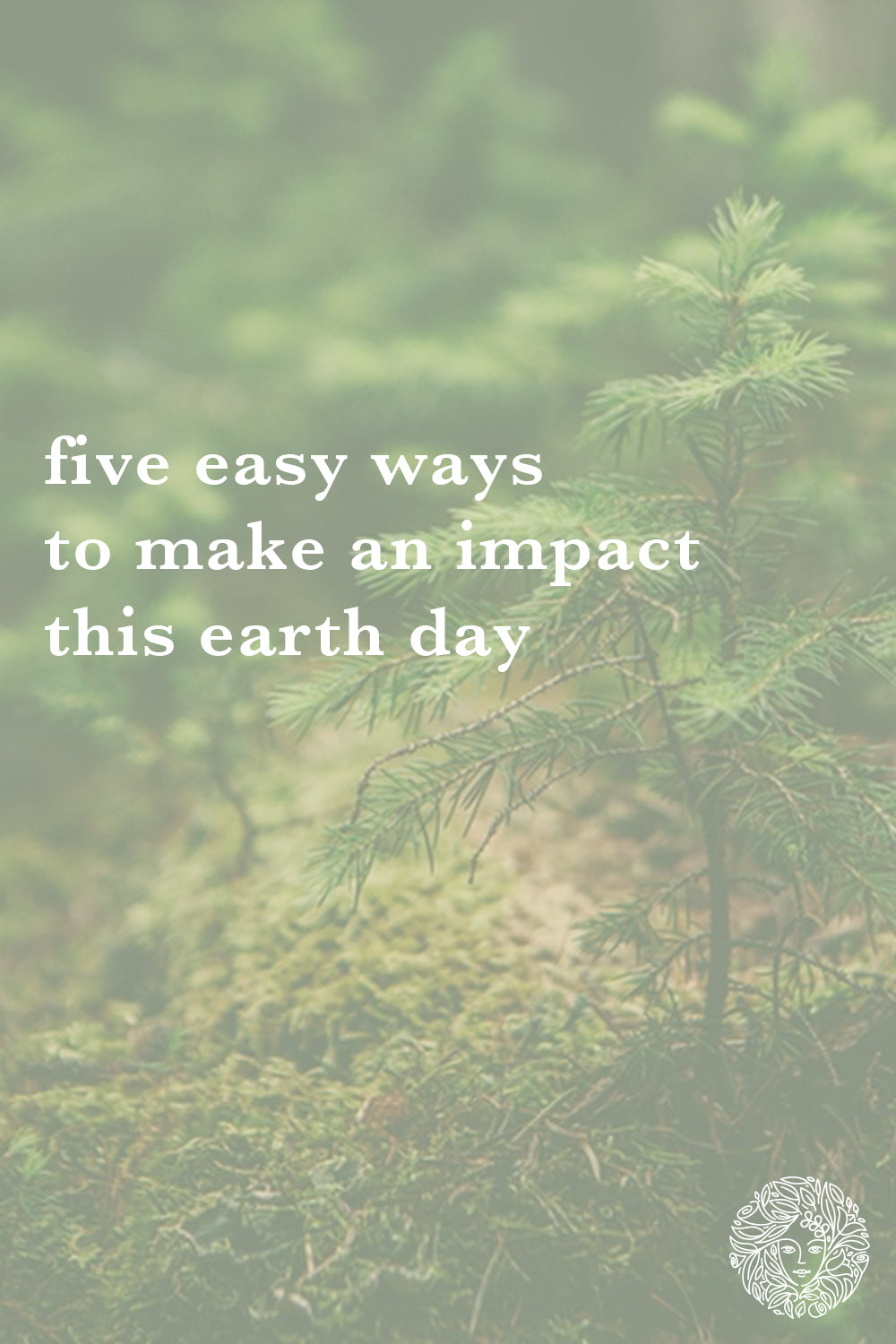5 Easy Ways to Make an Impact this Earth Day