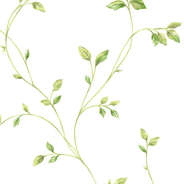 "Crestview 33 ' x 20.5 "" Floral Vine Wallpaper in Green and Off White"
