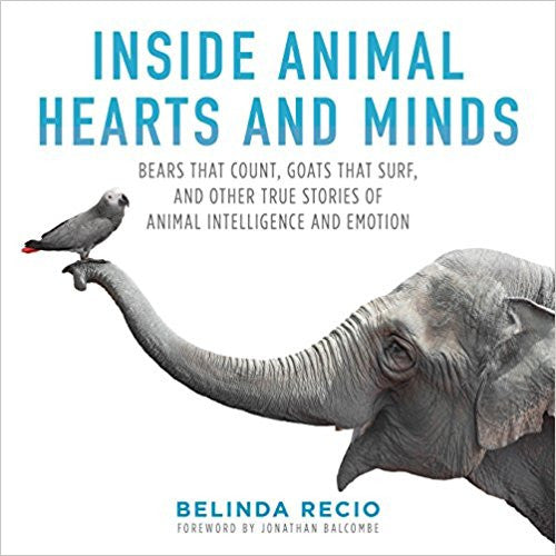 Coming Soon: My New Book, Inside Animal Hearts and Minds!