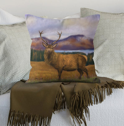 """Prince of the Highlands "" Cushion"