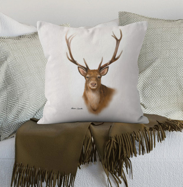 Rannoch Scatter Cushion