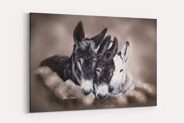 """Three Wise Donkeys"" - A4 Standard Canvas Print"