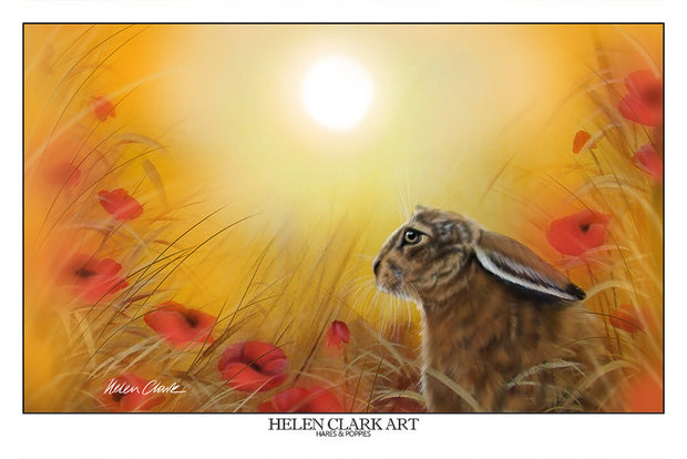 """Hare and the Poppies"" Art Prints"