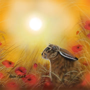 """Hare and Poppies"" SUPER SIZE Canvas"