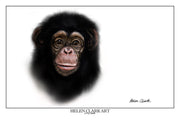 """Little Chimp"" Art Prints"