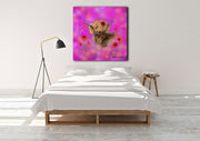 """Poppy in the Pink"" SUPER SIZE Canvas"