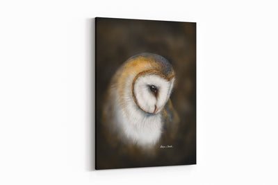 """Profile of a Barn Owl"" - A4 Standard Canvas Print"