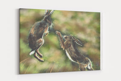 """Boxing Hares"" - A4 Standard Canvas Print"