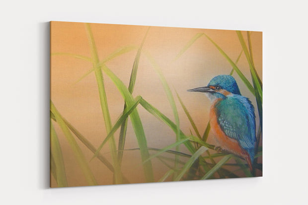 """Kingfisher Gold"" - A4 Standard Canvas Print"