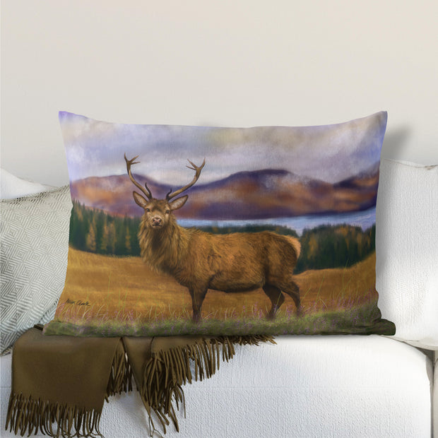"""Prince of the Highlands "" Lumbar Cushion"