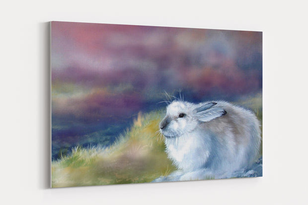 """Mountain hare"" - A4 Standard Canvas Print"