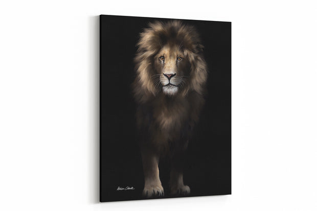 """Out Of The Shadows Lion"" - A4 Standard Canvas Print"