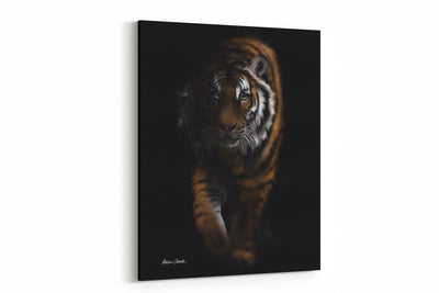"""Out Of The Shadows Tiger"" - A4 Standard Canvas Print"