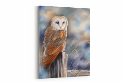 """Owl Perch"" - A4 Standard Canvas Print"