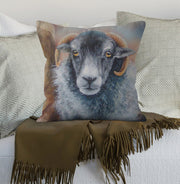 Shy Sheep Scatter Cushion