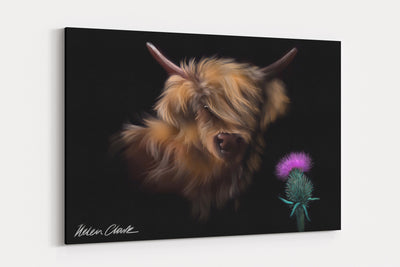 """Thistle"" - A4 Standard Canvas Print"