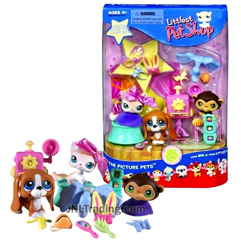 Year 2006 Littlest Pet Shop LPS Bobble Head Figure Set - Springtime Fun Pets with Basset Hound, Chimpanzee & Shorthair Kitten Cat Plus Props Accessory