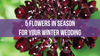 5 Flowers in Season for your Winter Wedding